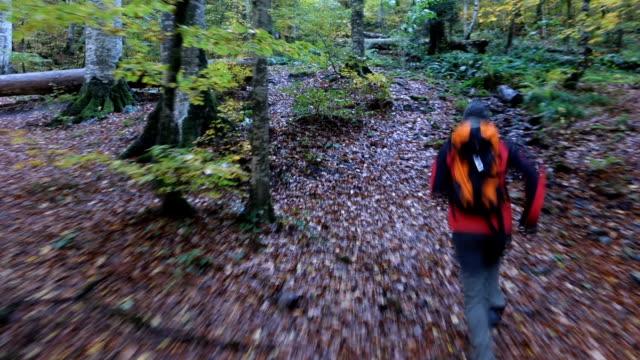 blurred motion of a man running in the forest in autumn
