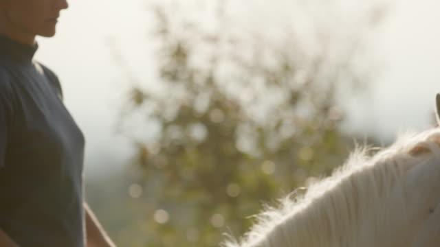 vidéos et rushes de flou de mouvement d'équitation - sans mise au point and équilibre