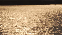 Blurred tranquility golden background of Water surface.