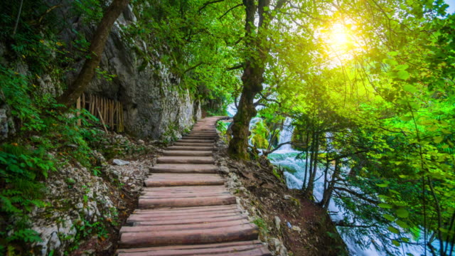 STEADYCAM: Boardwalk through beautiful Nature in Plitvice Lakes National Park, Croatia