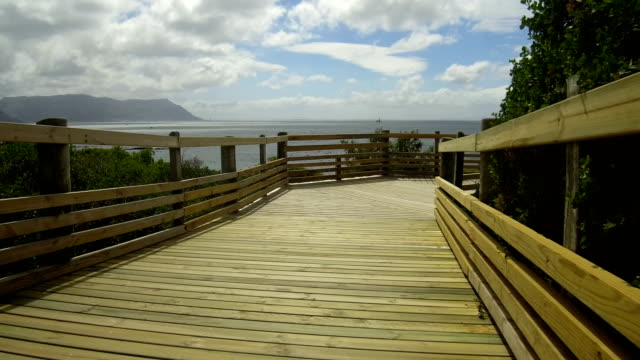 boardwalk to boulders beach, south africa - boulder beach western cape province stock videos and b-roll footage