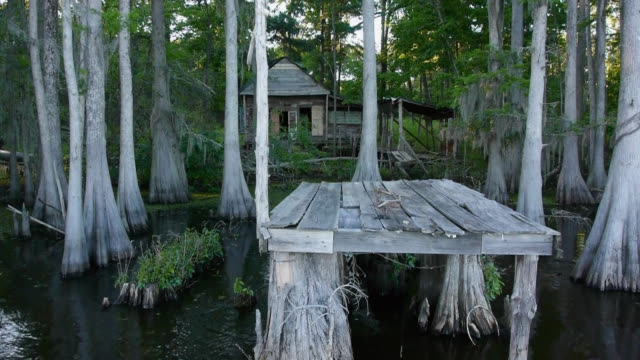 Boat POV, abandoned building & dock in swamp, cypress trees, Spanish moss, Caddo Lake, on the Texas/Louisiana border