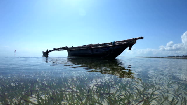 boat anchored in shallow sea - sea grass plant stock videos & royalty-free footage
