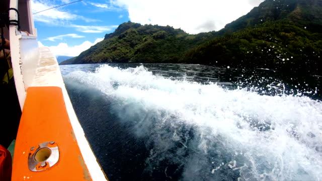 boat fishing near tahuata marquesas island south pacific - frankrikes utomeuropeiska områden bildbanksvideor och videomaterial från bakom kulisserna