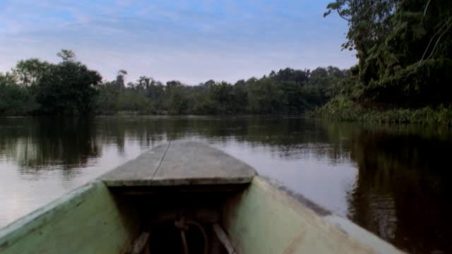 vidéos et rushes de pov boat floating on water, french guiana - guyane