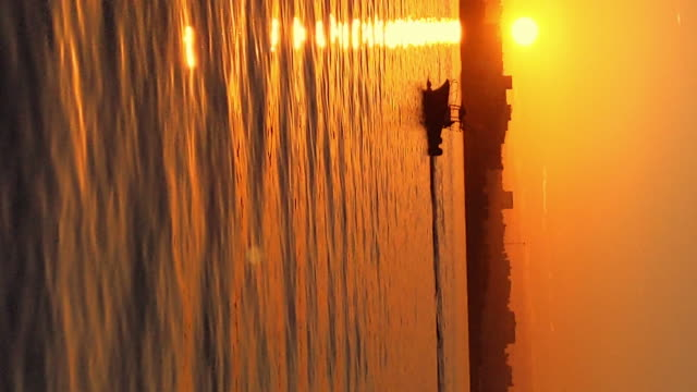a boat leaves the harbor at sunrise in san diego - san diego stock videos & royalty-free footage