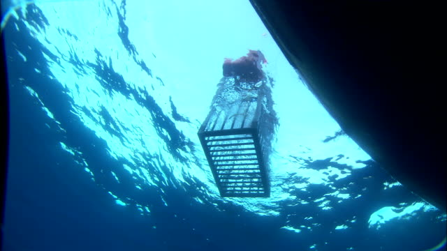 A boat lowers a shark cage into the Mediterranean Sea. Available in HD.