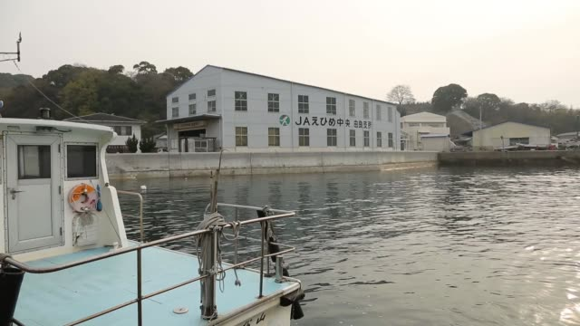 boat moored in harbour outside an agricultural cooperative in gogoisland ehime prefecture a worker enters an agricultural cooperative building in... - agricultural cooperative stock videos and b-roll footage
