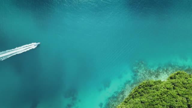 vidéos et rushes de ws a boat motors through clear, blue tropical water / koror, palau - south pacific ocean