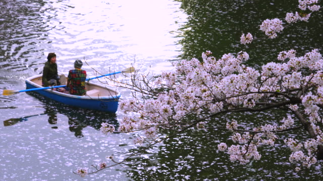 A boat moves on shiny water under Cherry blossoms tree, and makes ripples at Chidorigafuchi Moat.