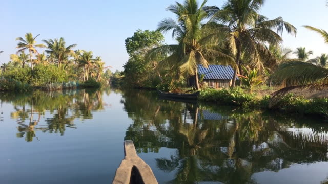 boat moving through backwater rivers, kerala / india - uppdämt vatten bildbanksvideor och videomaterial från bakom kulisserna