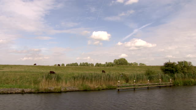 boat on river, view water's edge - polder stock videos and b-roll footage