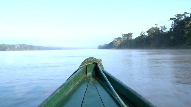 barca sul lago - rio delle amazzoni video stock e b–roll