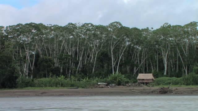 WS TS boat POV past hut on shore/ Manu National Park, Peru