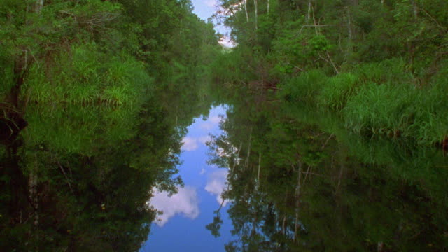 Boat point of view down narrow swampy jungle river / reflection of sky and trees in water / Java