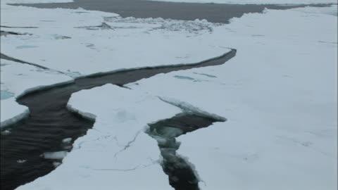 ws boat point of view moving through ice/ north pole - nordpolen bildbanksvideor och videomaterial från bakom kulisserna