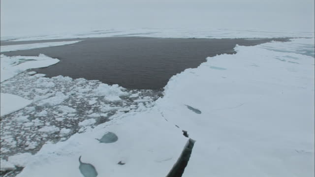 ws boat point of view moving through ice/ north pole - north pole stock videos & royalty-free footage