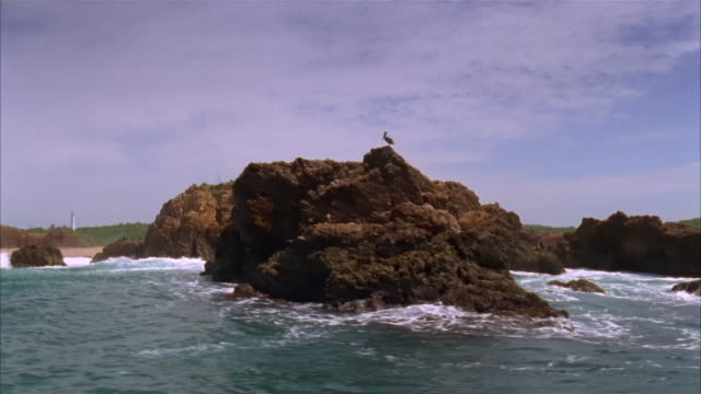 boat point of view wide shot passing pelican perched atop rock formation on rocky coastline / costa careyes, mexico - rocky coastline stock videos & royalty-free footage