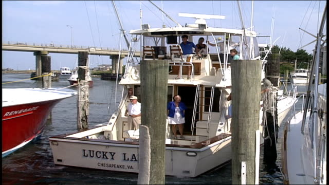 boat pulling into dock in virginia - ausflugsboot stock-videos und b-roll-filmmaterial