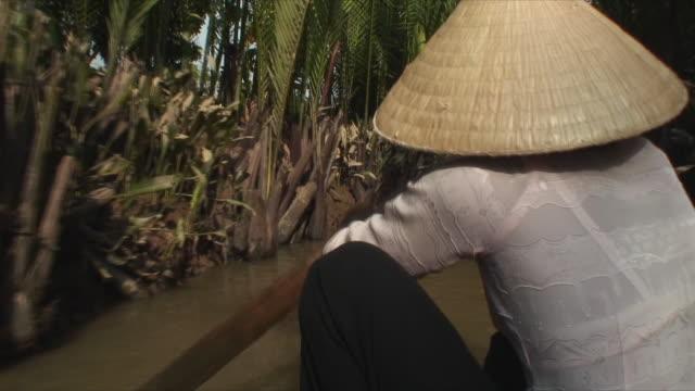 MS POV Boat ride down Mekong River, Mekong Delta, Vietnam