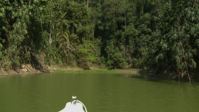 boat sail to sungai ruok waterfall, malaysia - push in stock videos & royalty-free footage