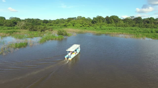 stockvideo's en b-roll-footage met boat touring at tropical wetlands in costa rica - color negro