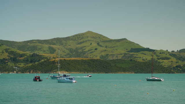 a boat towing a person on an inflatable ring speeds around akaroa harbour, new zealand - akaroa stock videos & royalty-free footage