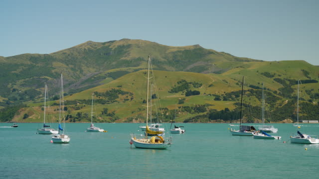 a boat towing a person on an inflatable ring speeds past other boats, new zealand - akaroa stock videos & royalty-free footage