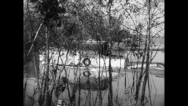 vídeos y material grabado en eventos de stock de boat traveling on intercoastal waterway pulling smaller boat. large group of muddy ducks caught in net trap men approaching netted ducks. swans &... - pollo de cisne