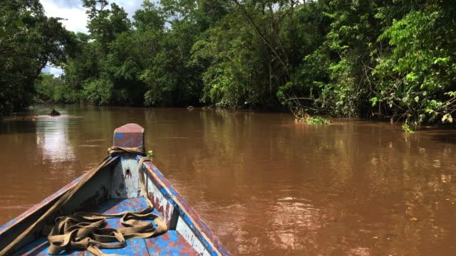 Boat trip along jugle river