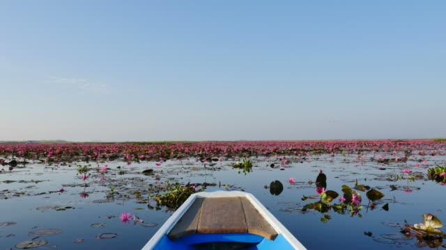 Boat trip at pink lotus lake, Udon Thani Province, Thailand.