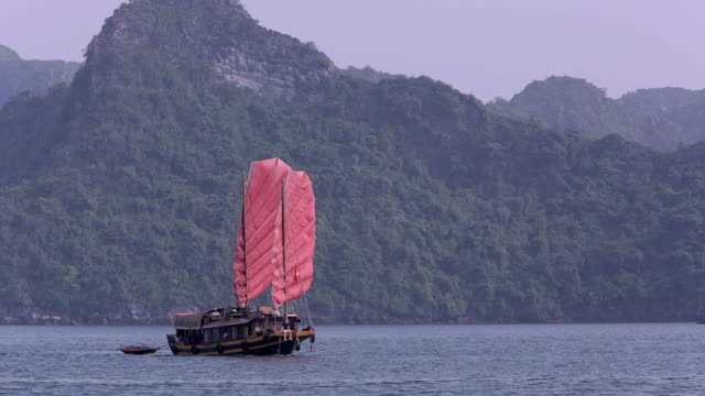 vidéos et rushes de ws boat with red sails in bay / ha long bay, vietnam - jonque