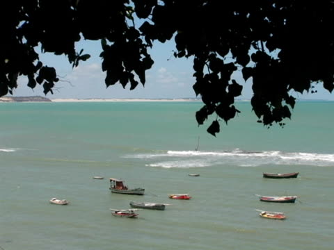ws, ha, boats anchored in ocean, tree branches in foreground, praiya de pipa, brazil - anchored stock videos & royalty-free footage