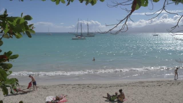vídeos y material grabado en eventos de stock de boats and beach at la datcha, pointe-a-pitre, guadeloupe, french antilles, west indies, caribbean, central america - territorios franceses de ultramar