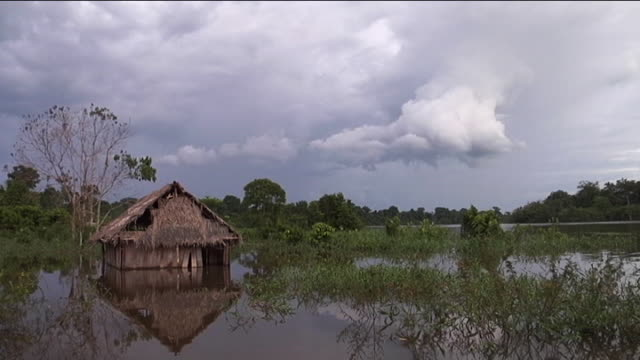 vídeos y material grabado en eventos de stock de boats and shacks in brazilian river, montage - rancho