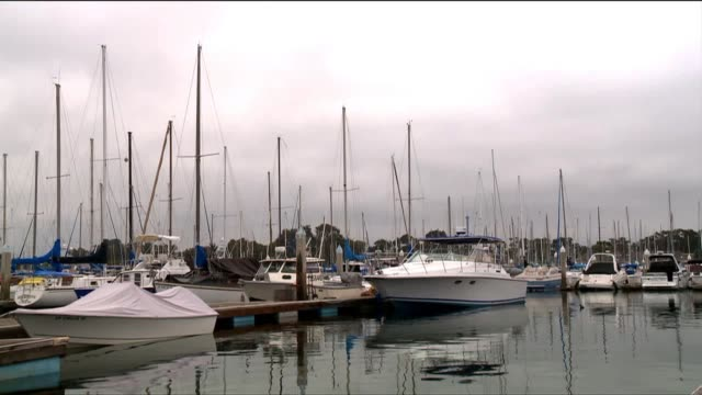 boats at san diego harbor - jachthafen stock-videos und b-roll-filmmaterial