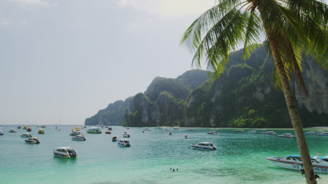 boats at ton sai bay of phi phi don, koh phi phi, thailand - inselgruppe phi phi stock-videos und b-roll-filmmaterial
