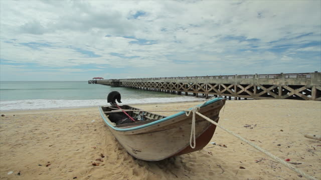 boote am tropischen strand - insel phi phi le stock-videos und b-roll-filmmaterial