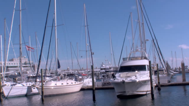 T/L WS Boats in harbor  / Saint Petersburg, Florida, USA