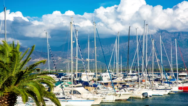 boats in harbor - calvi stock videos and b-roll footage