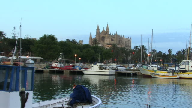 ws, zi, boats in harbor with la seu cathedral in background, spain, balearic islands, mallorca, palma - palma nana video stock e b–roll