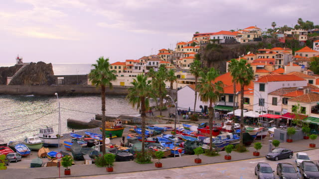 boats in harbour - madeira stock videos and b-roll footage
