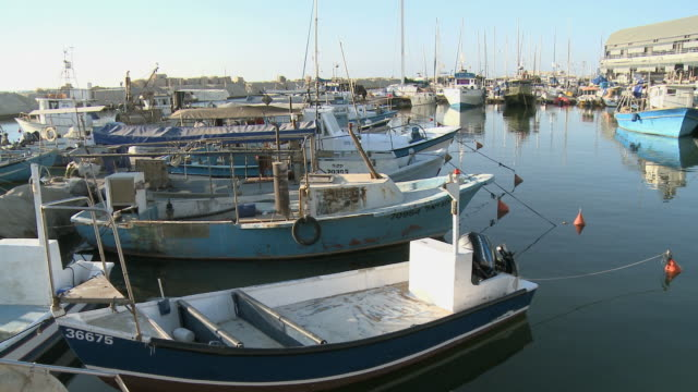 ws pan boats in jaffa port / jaffa, dan metropolitan, israel - jaffa stock videos & royalty-free footage