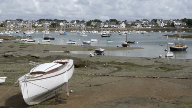 boats in ploumanach port at low tide - low tide stock videos & royalty-free footage