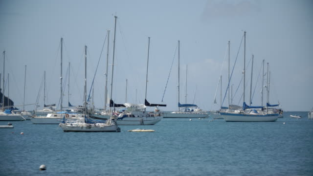boats in st george's bay / grenada, caribbean - st. george's grenada stock videos and b-roll footage