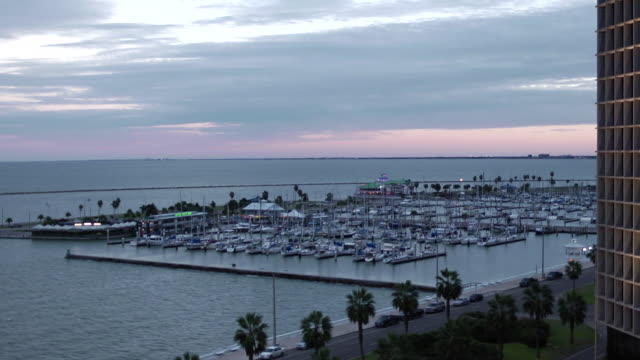 boats moored, anchored in corpus christi bay marina, docks, pier, palm trees, high-rise building right, rapid motion cars driving down street, clouds... - anchored stock videos & royalty-free footage