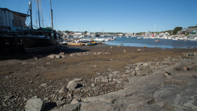 ws t/l boats moored at harbour during low tide - tide stock videos & royalty-free footage