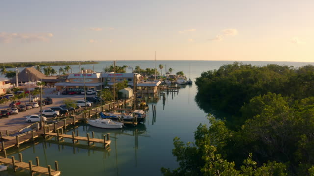 ws boote in sonnigen hafen, florida keys, key west, florida, usa - jachthafen stock-videos und b-roll-filmmaterial