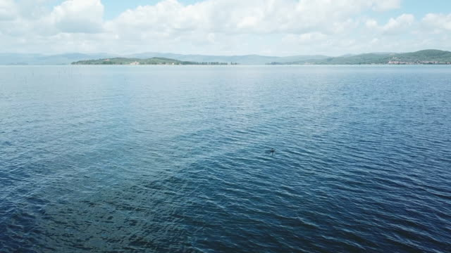 vídeos de stock, filmes e b-roll de boats on lake - umbria