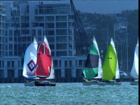 boats race through auckland harbour, north island, new zealand - north island new zealand stock videos & royalty-free footage